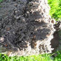 Substrat élaboré fibre sur le terrain de foot de Mesnil Amelot